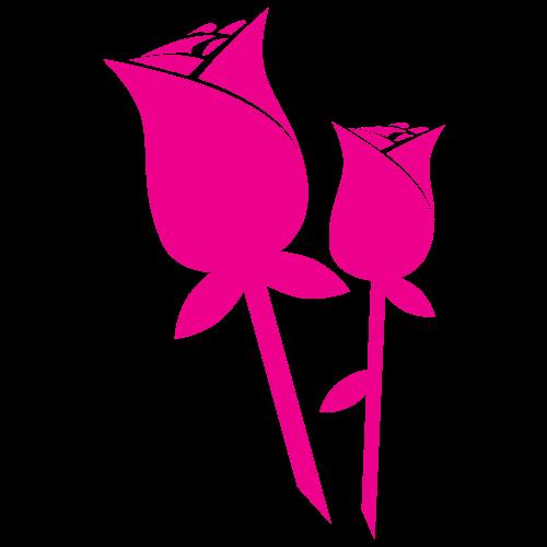 Wirkung und Einsatzmöglichkeiten von Rosenwasser